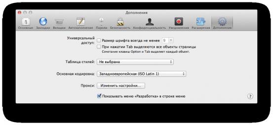 Включение консоли разработчика в Safari