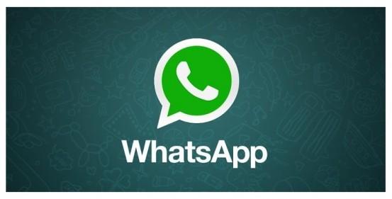 WhatsApp_1_nowm