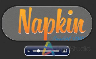 Napkin (6)