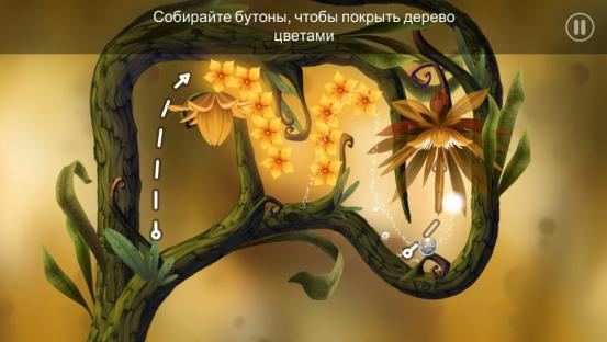 IMG_5985