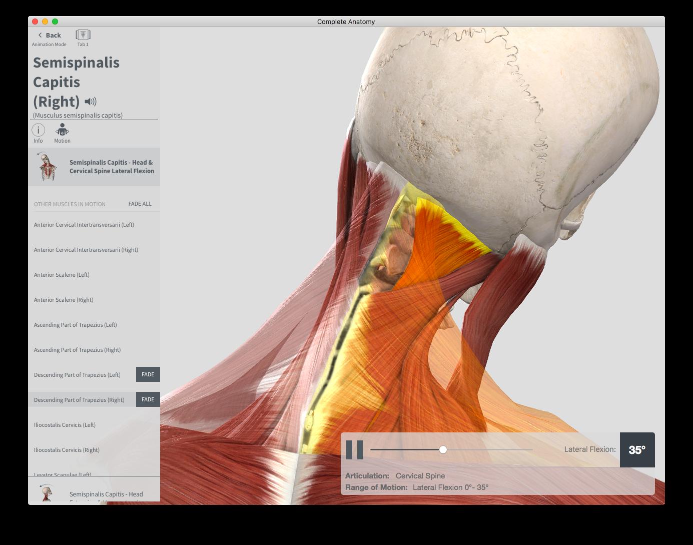 Mac App Store Complete Anatomy 2018